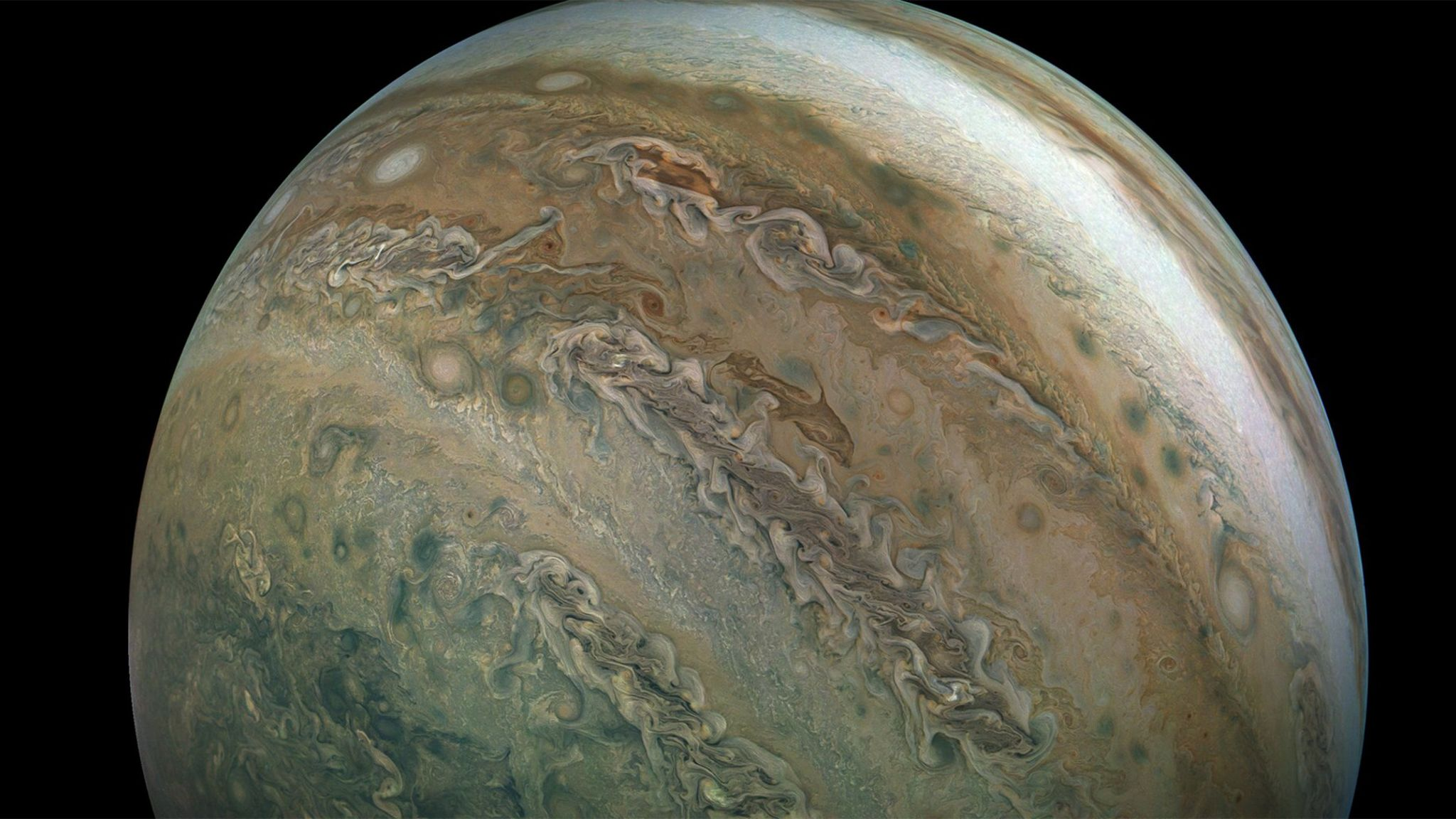 A Dolphin in Jupiter's Clouds