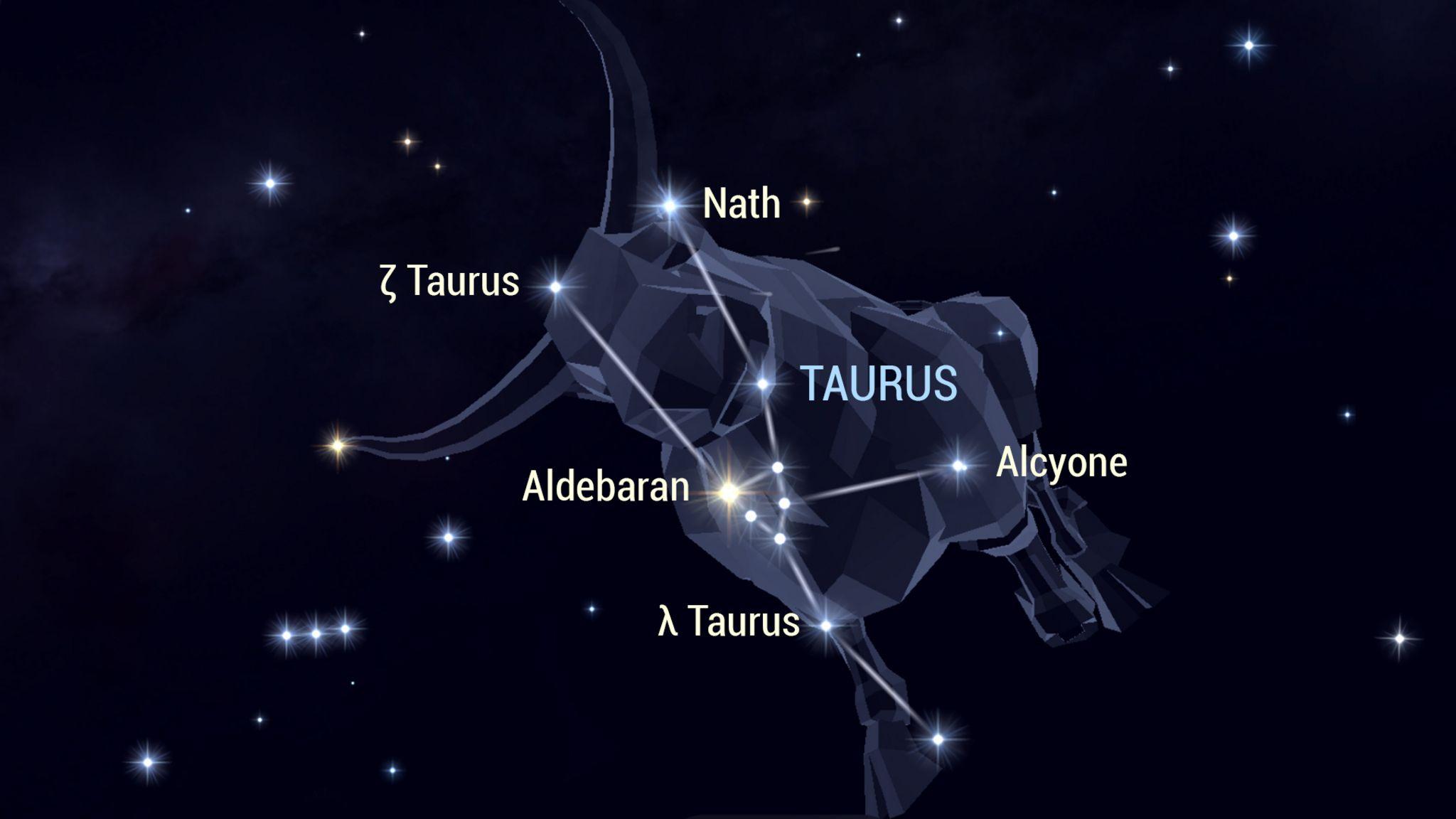 Stier im Nachthimmel