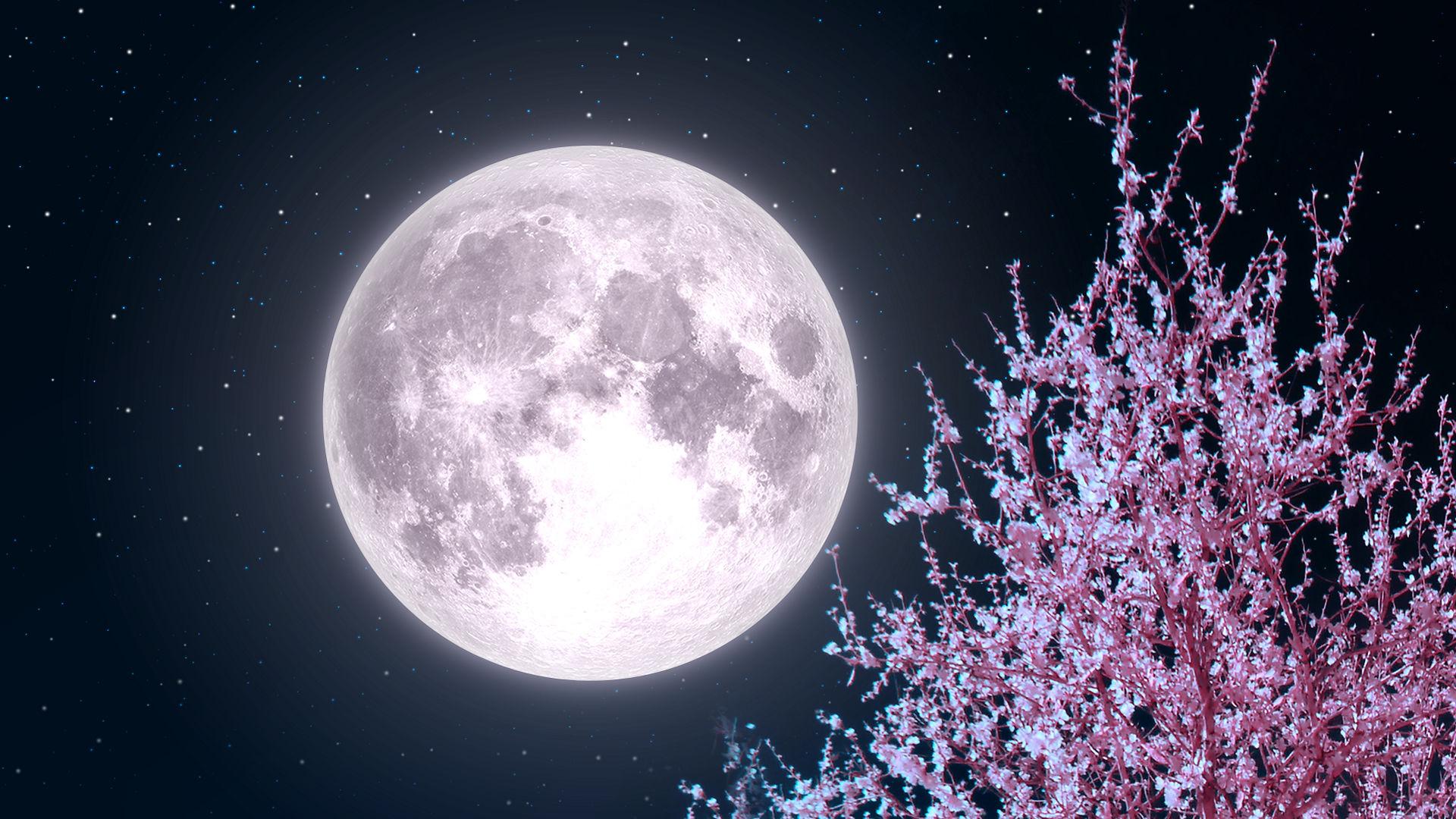 «Розовая Луна»: Самое большое суперлуние 2020 года