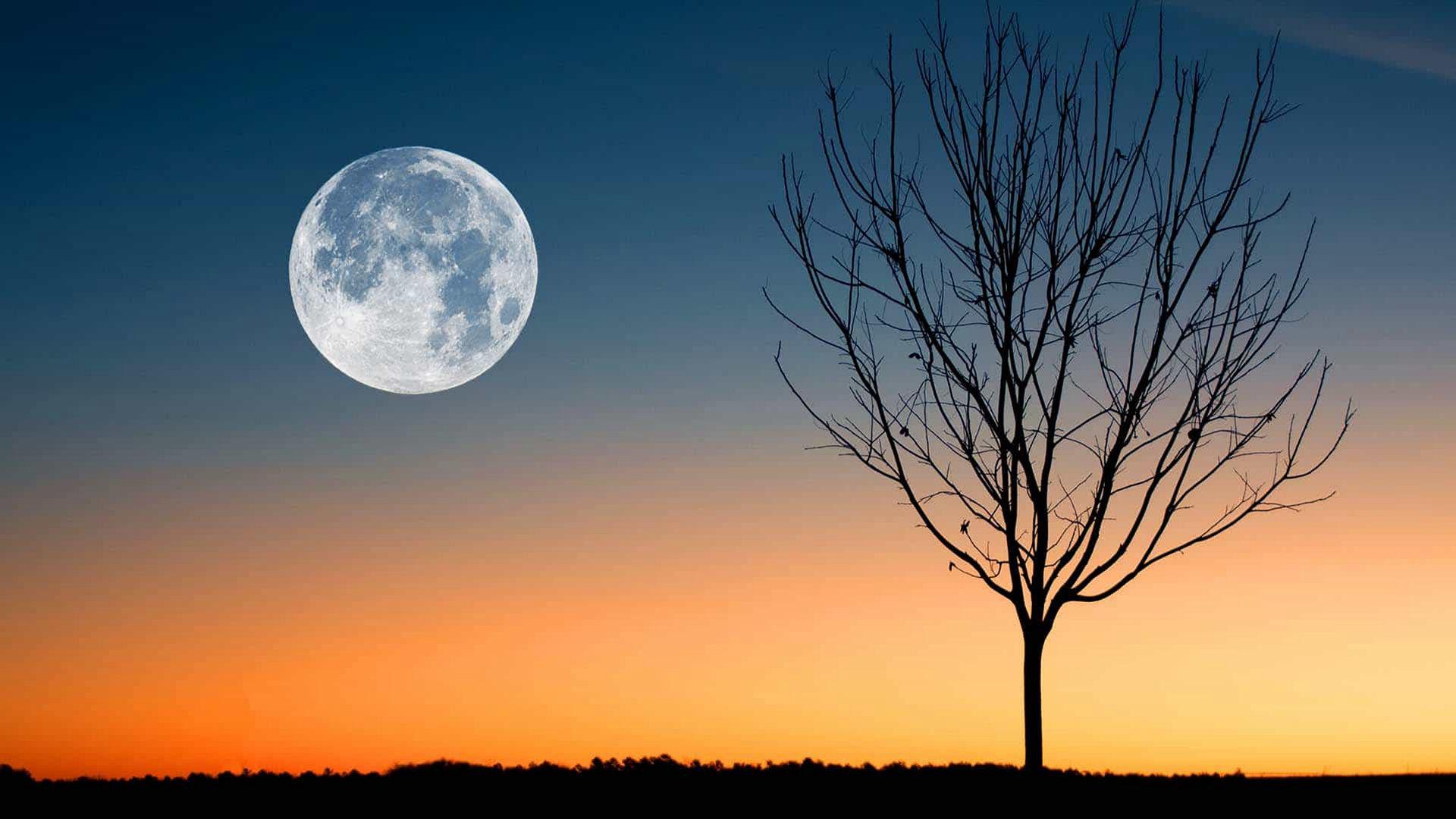 """3月的""""虫月"""":它是不是2021年的第一个超级月亮?"""