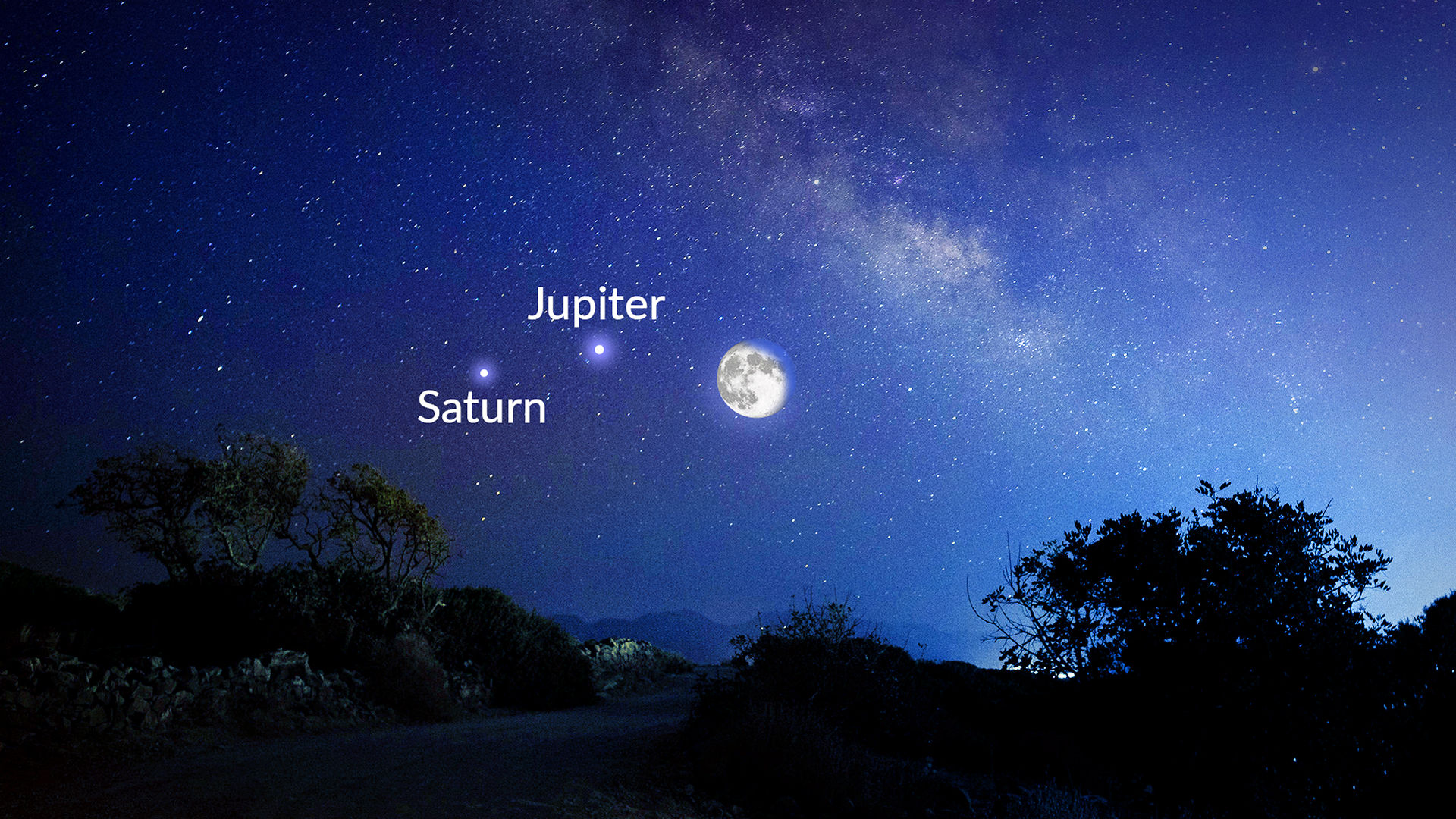 Star Jupiters