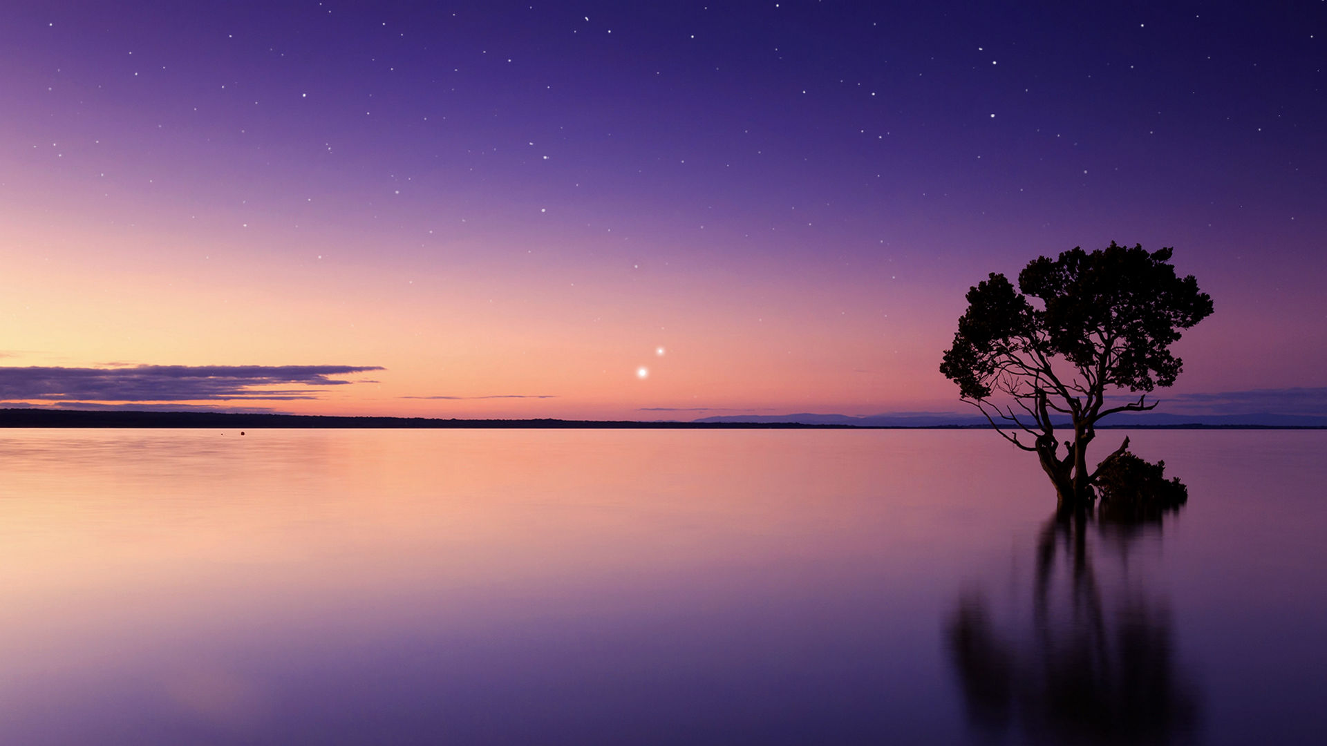 Enjoy the Bright Duo of Mercury and Jupiter