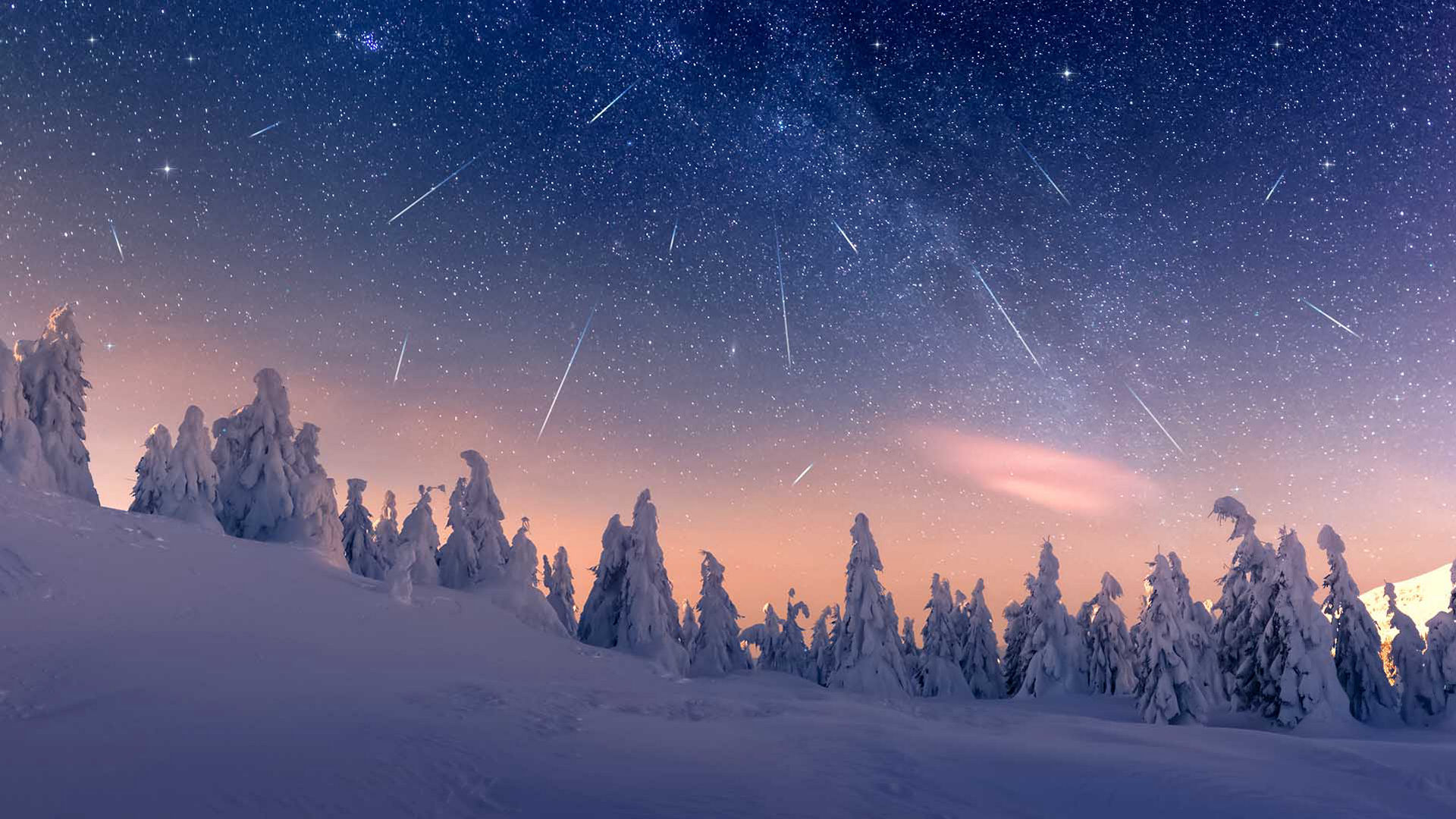 Snow covered trees and meteor in the sky