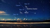 De maan schijnt naast Venus en de Bijenkorf-cluster